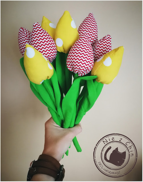 Kolejna dawka tulipanów