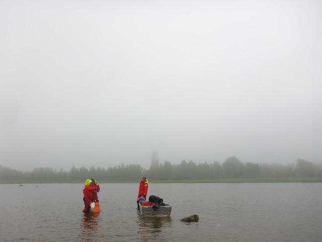 Kolme kartoittajaa pelastautumispuvuissa matalassa vedessä hyvin sumuisena päivänä.