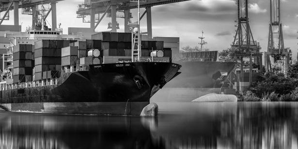 перевозка пассажиров и грузов речным и морским транспортом