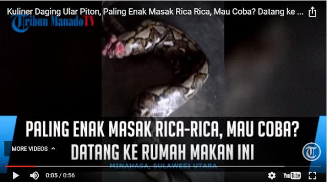 VIDEO - Kuliner Daging Ular Piton, Paling Enak Masak Rica-Rica, Mau Coba?