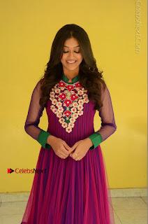 Actress Pooja Jhaveri Latest Stills in Purple Salwar Kameezt at Dwaraka Success Meet  0099.JPG