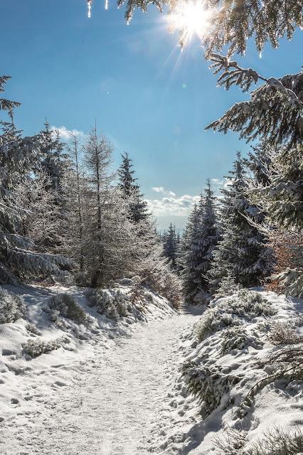Zima w Górach Sowich - zejście z Wielkiej Sowy do schroniska Sowa