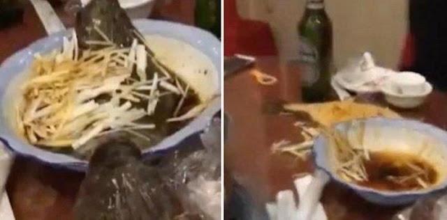 سمكة مطبوخة تعود الى الحياة و تصيب رواد المطعم بالصدمة.( فيديو )