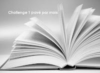 https://deslivresdeslivres.wordpress.com/2014/06/05/challenge-1-pave-par-mois/comment-page-1/