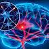 Las personas con sentimientos de venganza tienen un cerebro menos desarrollado