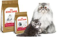 Royal Canin Cat. Makan Terbaik Untuk melembutkan dan melebatkan bulu