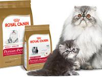 Royal Canin Cat. Makanan Untuk Melebatkan dan Menghaluskan Bulu Kucing