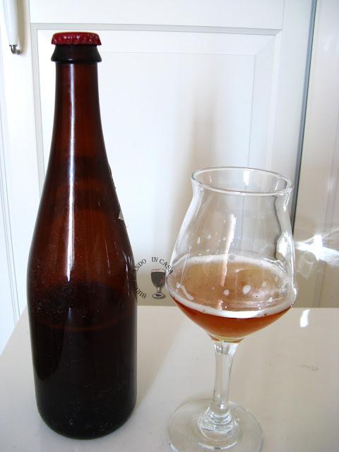 Birra bitter inglese ai fiori di sambuco