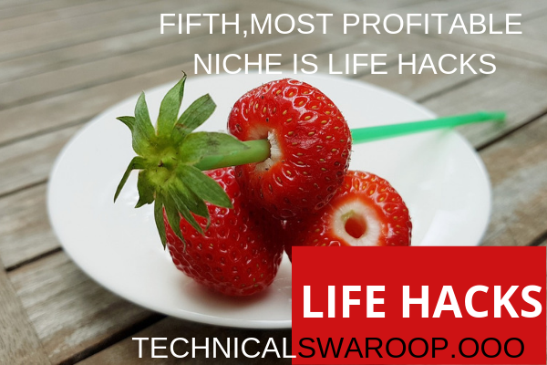 fifth,most profitable niche is Life Hacks