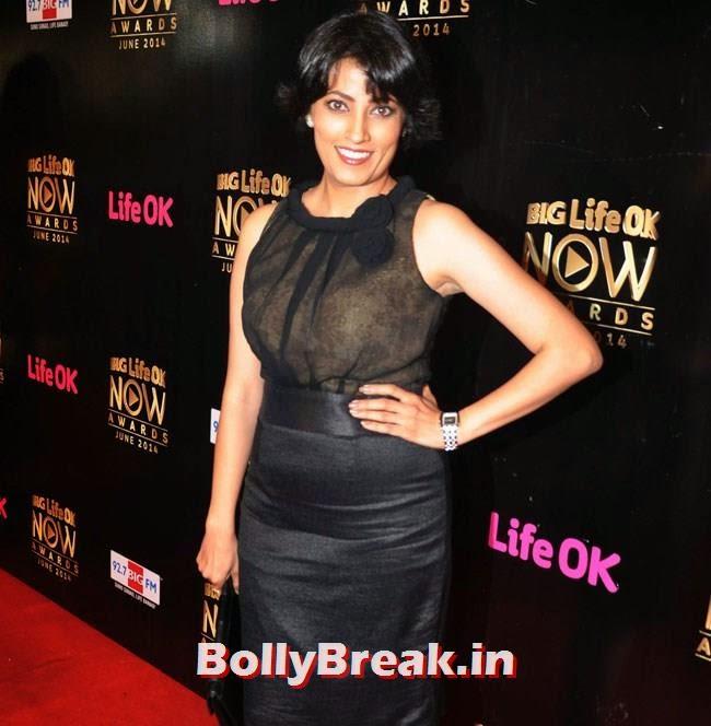 Meghna Malik, Life OK Now Awards 2014 Red Carpet Pics