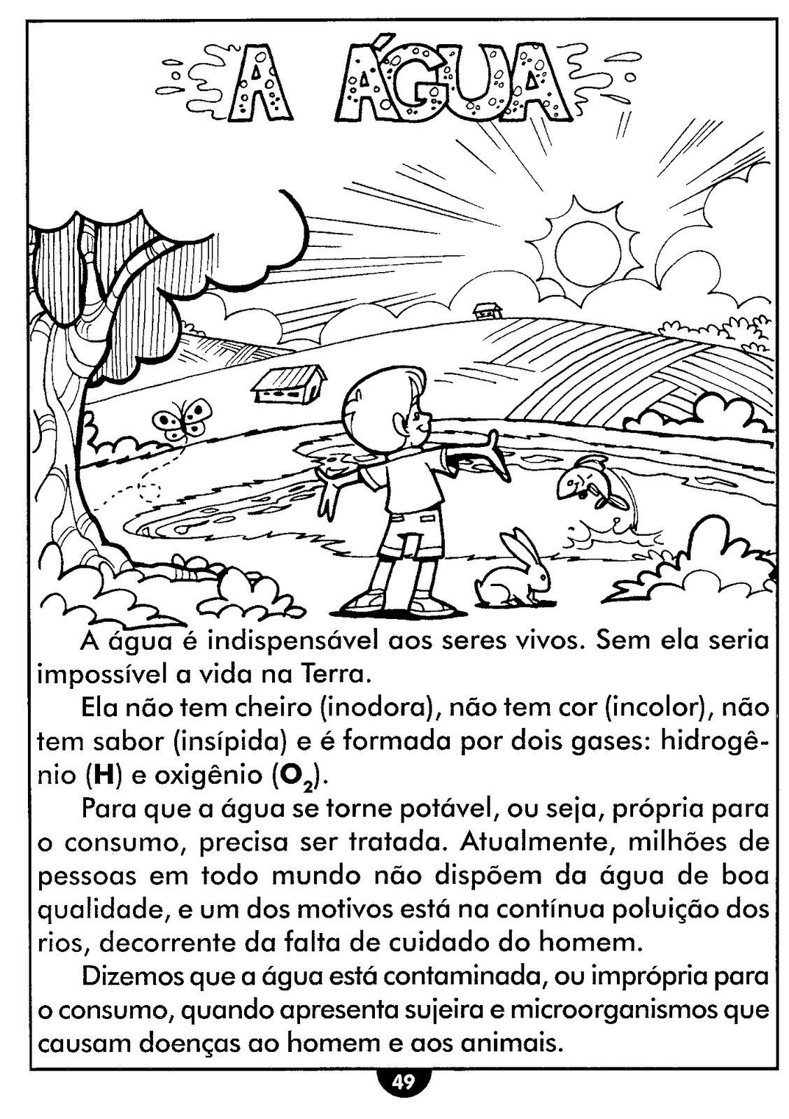 ATIVIDADES DE CIÊNCIAS 4° ANO ALFABETIZAÇÃO DIVERTIDA 9