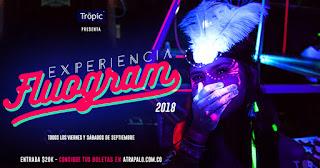 The Fluogram Experience