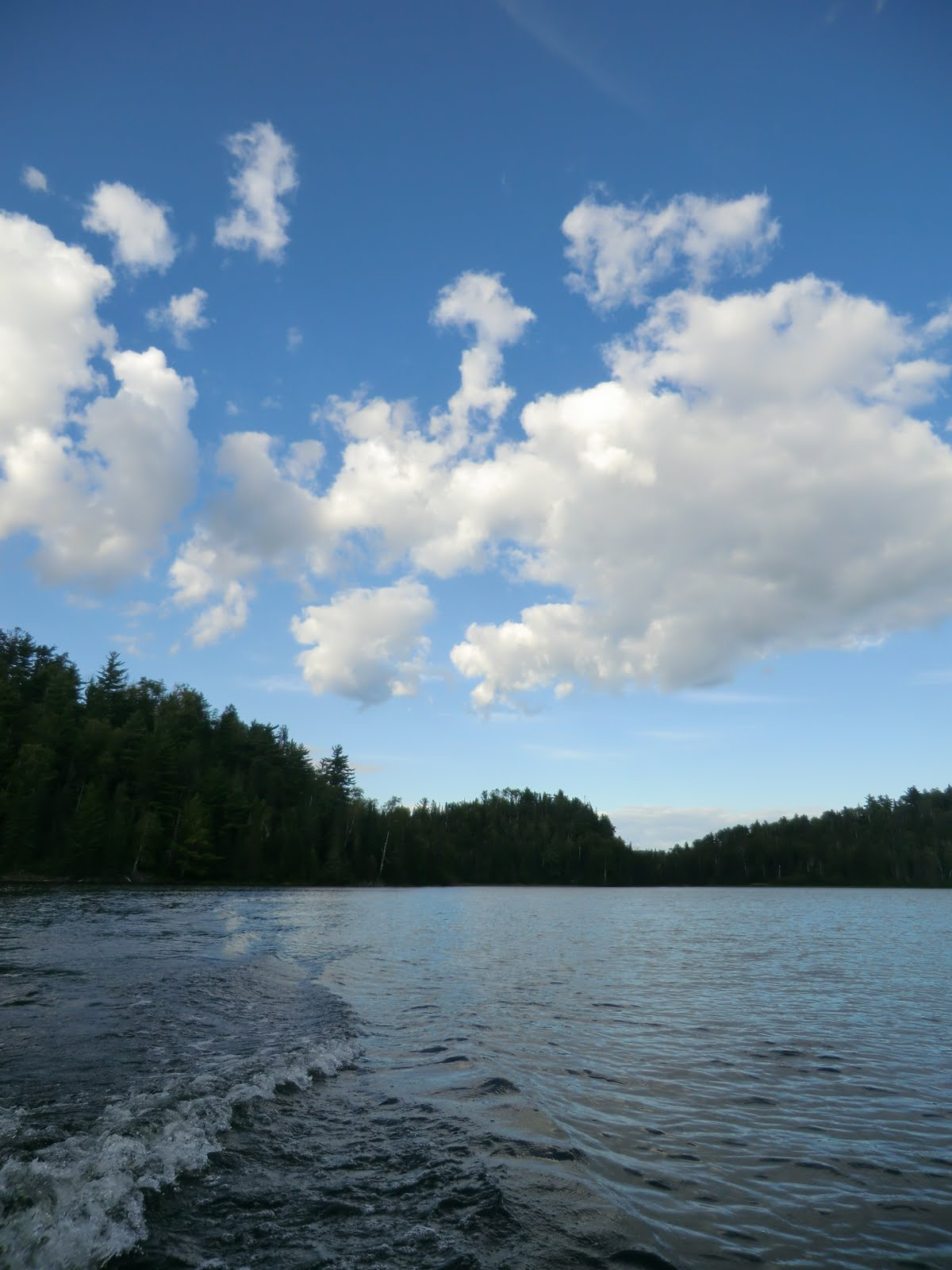 From Nature to Home : Boating at Cloud Lake, Camellia's ...