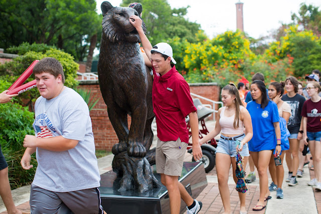 Trinity University students touch the tiger