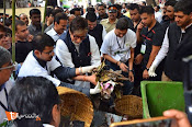 Amithab at jj hospital Maha Cleanathon-thumbnail-4