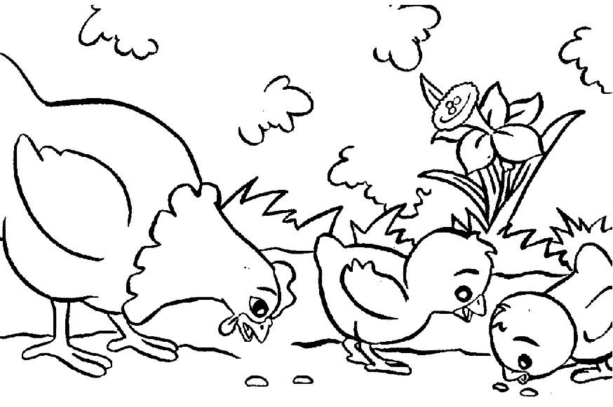 El Baúl De Innela Dibujos Para Colorear Gallina Con Pollitos