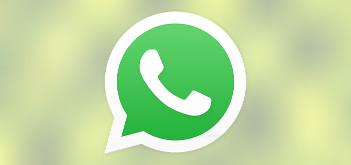 WhatsApp Now Gets Bold Or Italic Text Format, Send Google Drive Files As PDF, And More