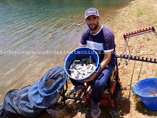 Pesca de alburnos