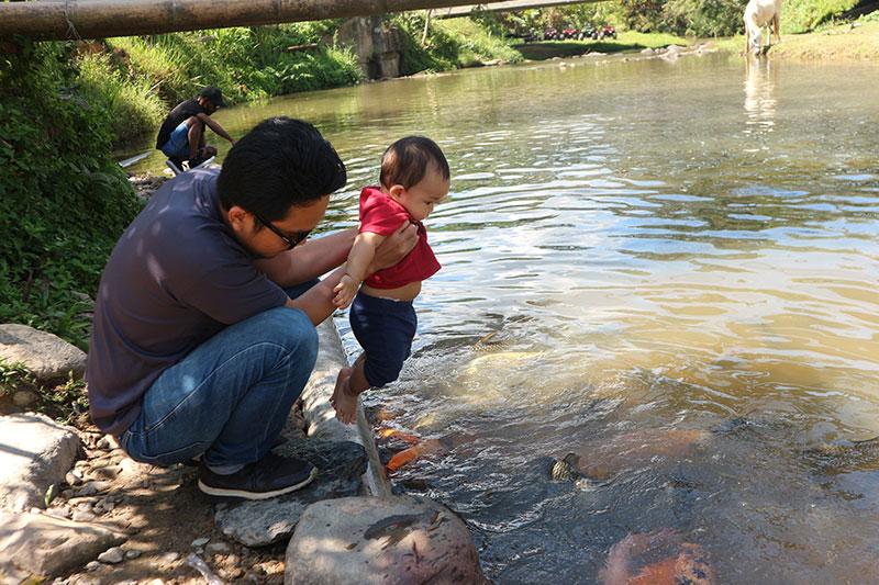 marakau bombon fish spa lohan ranau