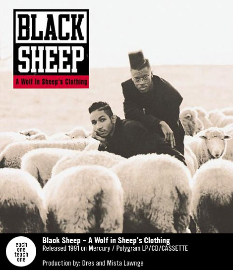 The Obscure Breaks And Samples Of A Wolf In Sheep S