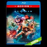 Aquaman (2018) IMAX HD BDREMUX 1080p Latino