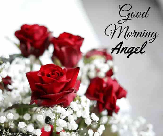 good morning angel with flowers