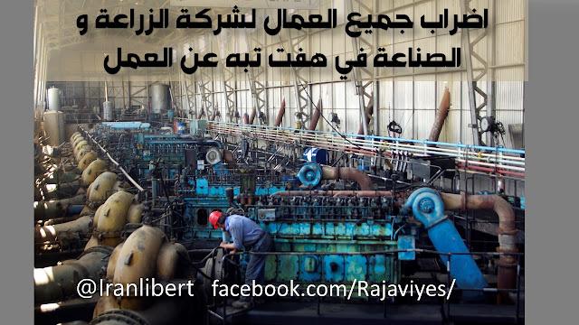 اضراب جميع العمال لشركة الزراعة والصناعة في هفت تبه عن العمل