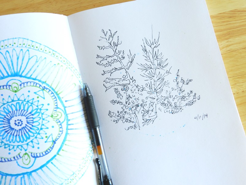 Trees Sketched in Ink: Grow Creative