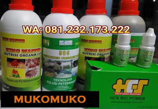 Jual SOC HCS, KINGMASTER, BIOPOWER Siap Kirim Mukomuko