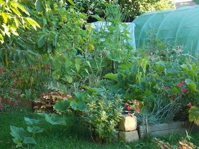 La permaculture sort du jardin pour nous aider à vivre mieux