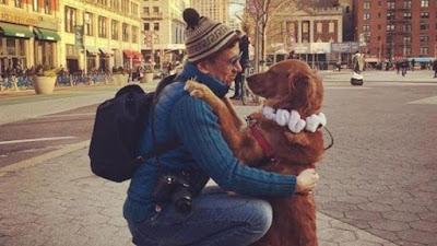 La perrita que reparte abrazos en las calles de Nueva York