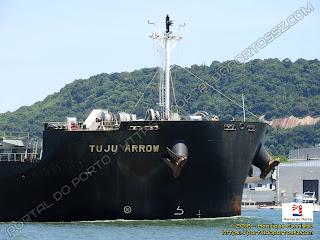 Tuju Arrow