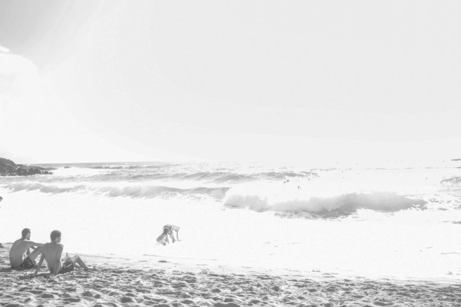 Le Chameau Bleu - Blog Voyage  Sardaigne - Sardinia - Sardaigne - Porto Alabe