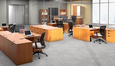 Practical Office Interior