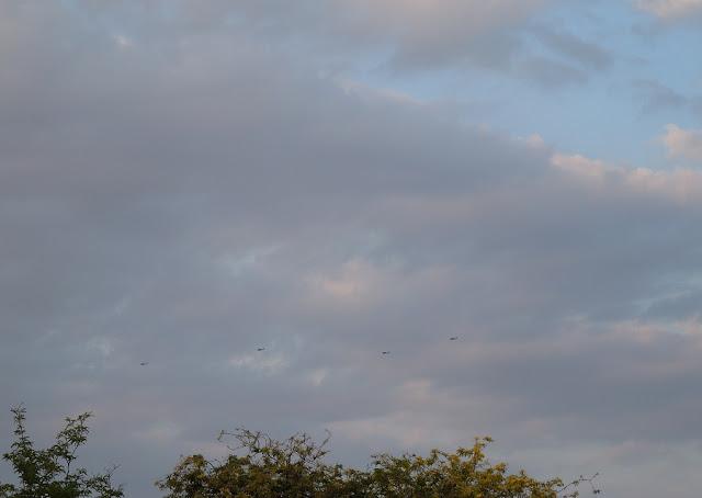 A Rare Sight in the Sky Over Paso Robles