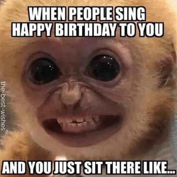 funny happy birthday images with monkey