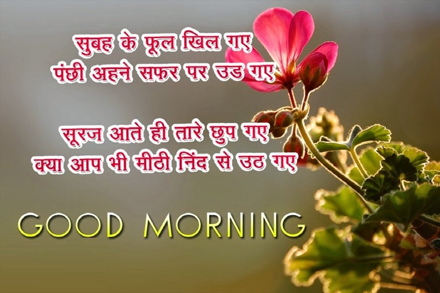 Beautiful Good Morning Hindi Picture