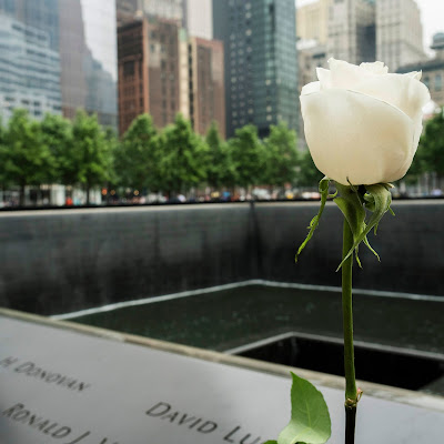 photo of a white rose in front of 9/11 memorial