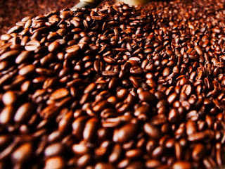 kopi-luwak-arabika-robusta.jpg