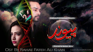 Paiwand Drama Ary Digital Cover