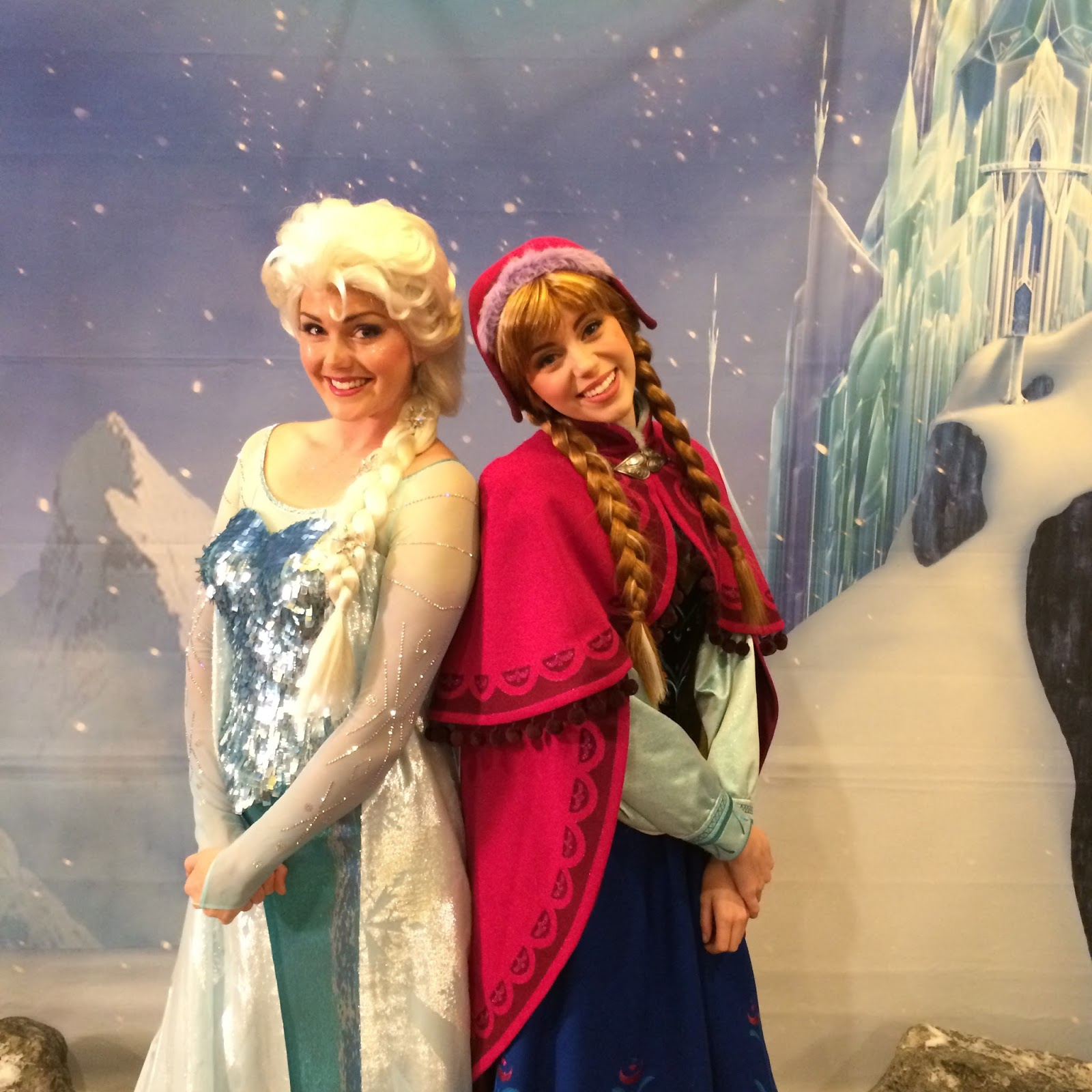 anna and elsa meet greet disney world worth it