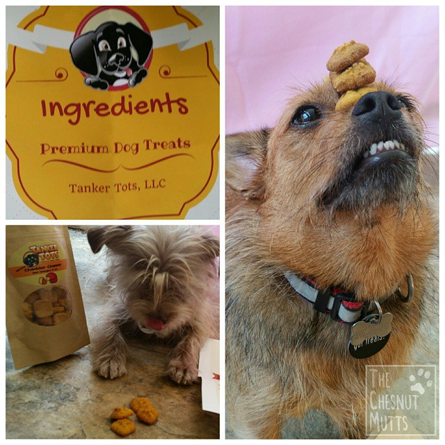 Tanker Tots Dog Treats