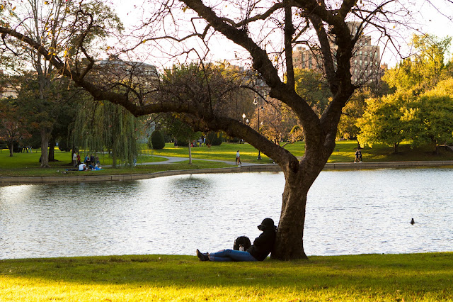 Boston-Common park