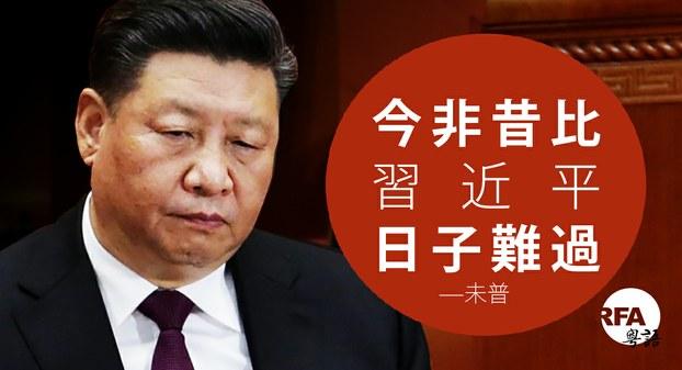 习元平有过几个老婆_中国茉莉花革命: 今非昔比,习近平日子难过