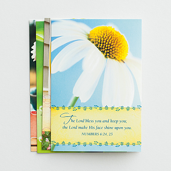 DaySpring Boxed Encouragement Cards