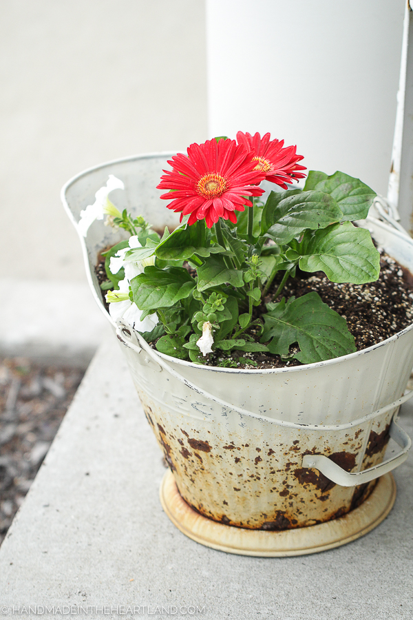 planting front porch flowers in vintage containers
