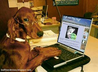 Loyal Life and Dog stuff follower