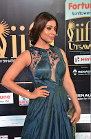Shriya Saran in Beautiful Transparent Dark Gown IIFA Utsavam Awards 2017 060.JPG