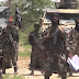 Boko Haram attacks Borno communities, kills 22 villagers