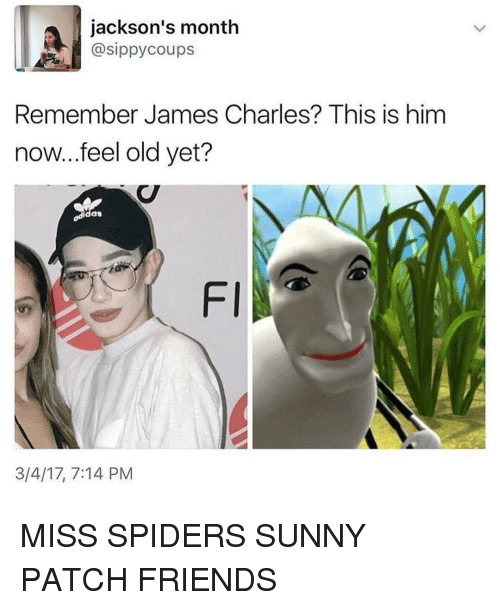 9 Hilarious James Charles Memes That Will Make You LOL